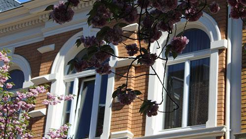 Wohnhaus in Bonn